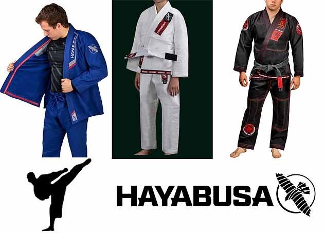 Hayabusa Gi review