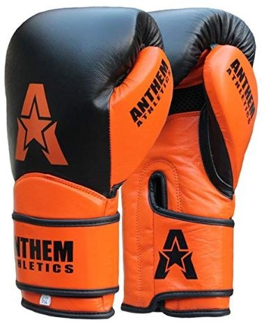 Anthem gloves
