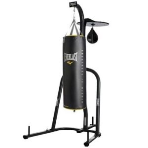 everlast dual station punching bag